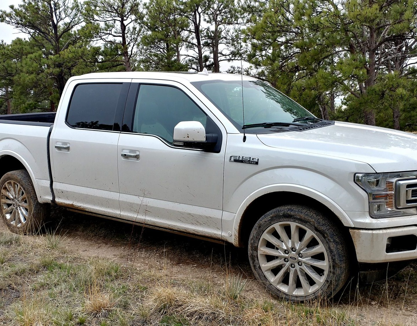 Video Review: 2019 Ford F-150 Limited is Serious Pickup Truck Luxury